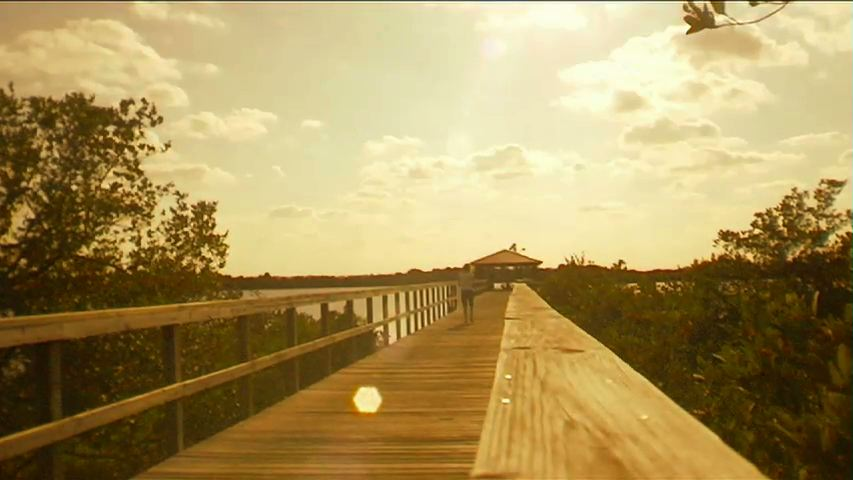 Photo for A Walk On The Dock